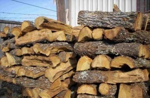 Αδειες ξύλευσης με... εγγυητική στον Δήμο Ζαγοράς -Μουρεσίου