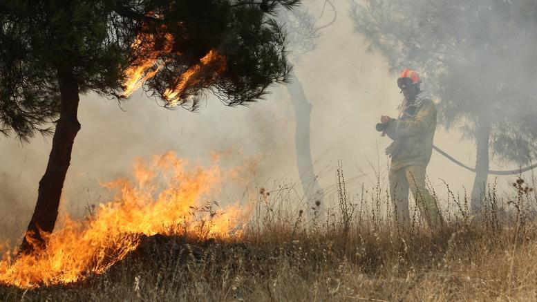 Συνελήφθη ηλικιωμένη για τη μεγάλη πυρκαγιά στα Τρίκαλα