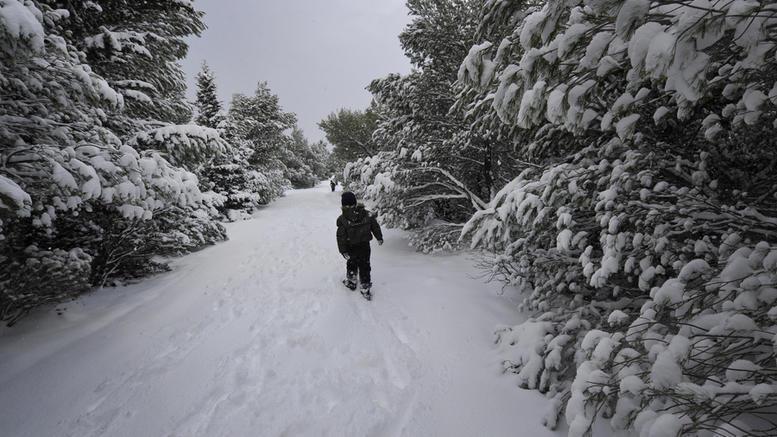 Τα σάρωσε όλα ο αέρας: Ριπές ανέμου έως 150 χλμ./ώρα Λίγα χιόνια στην Πάρνηθα
