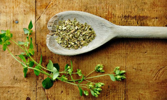 Πού βοηθάει η ρίγανη: Θεραπευτικές και θρεπτικές ιδιότητες