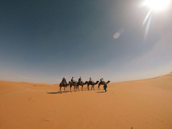 Ξενάγηση στη Μαροκινή Σαχάρα