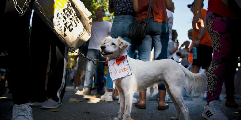 Για πρώτη φορά πορεία διαμαρτυρίας στην Κούβα!
