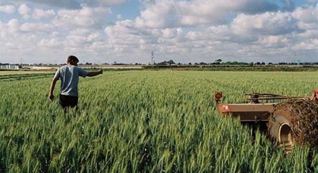 Ξεκινά η υποβολή δηλώσεων ΟΣΔΕ για αγρότες και κτηνοτρόφους