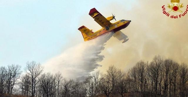 Πρόστιμο 13,5 εκατ. ευρώ σε δύο φοιτητές: Πήγαν να ψήσουν και έκαψαν το δάσος