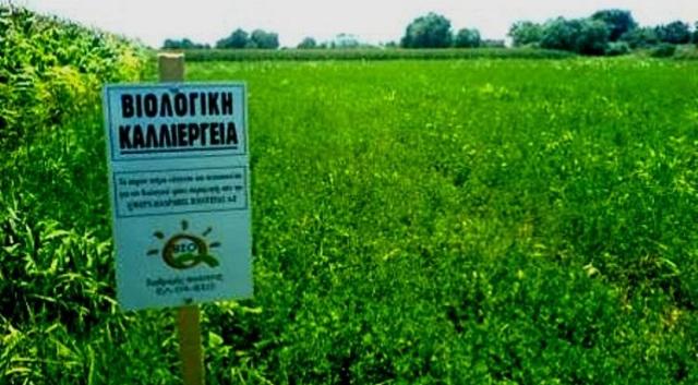 Εκτός του προγράμματος «Βιολογικές καλλιέργειες» αγρότες του Δήμου Ρ. Φεραίου