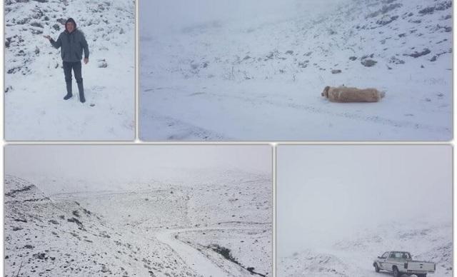 Γιάννενα: Επιστροφή στον χειμώνα με χιόνια –Ο καιρός «τρελάθηκε» στο κατάλευκο Συρράκο