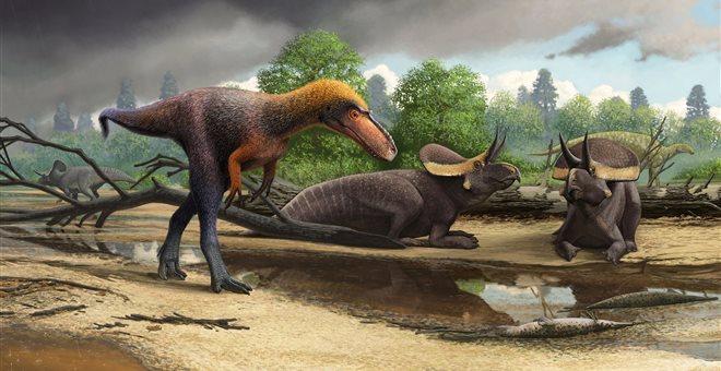 Απολιθώματα μικρομεσαίου προγόνου του Τυραννόσαυρου βρέθηκαν στις ΗΠΑ