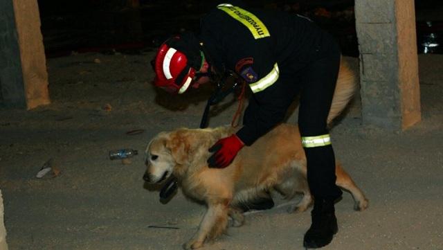 Ο σκύλος της ΕΜΑΚ βρήκε ηλικιωμένο που είχε εξαφανιστεί