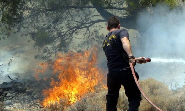 Φωτιά έκαψε έκταση με καλαμιές στην Νέα Αγχίαλο