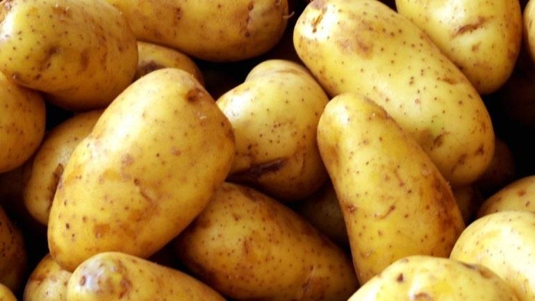 Κατάσχεση και καταστροφή μεγάλης ποσότητας πατάτας στον Πειραιά