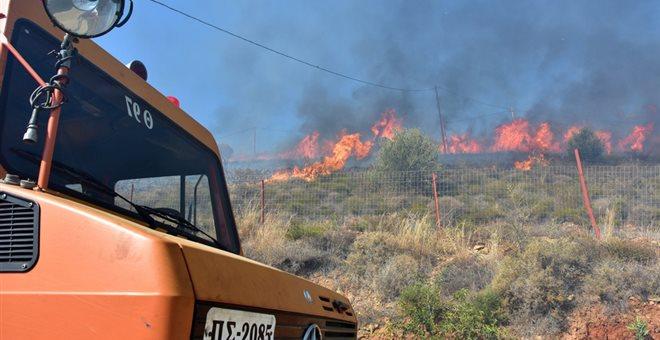 Σε εξέλιξη δασικές πυρκαγιές σε Αγίους Θεοδώρους και Εύβοια