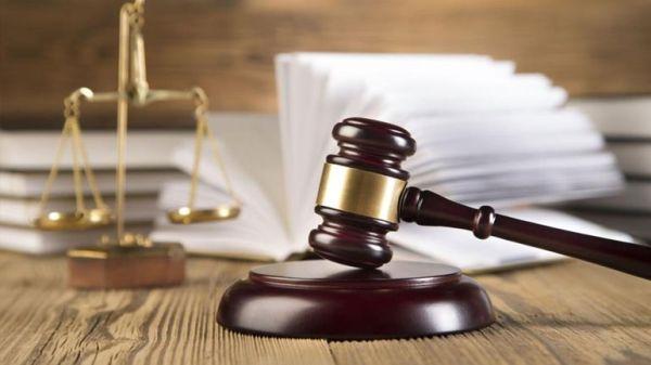 Φυλάκιση δύο ετών για ταξίδια - μαϊμού