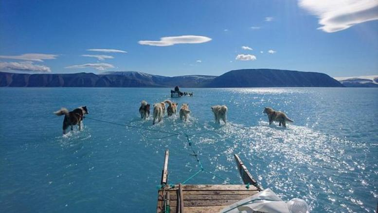 Η φωτογραφία για την Γροιλανδία που έγινε viral