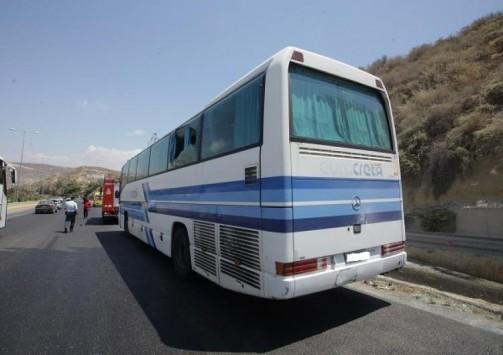 Λεωφορείο του ΚΤΕΛ παρέσυρε και σκότωσε αγριογούρουνο