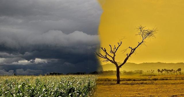 Καύσωνας στην Ευρώπη, βροχές στην Ελλάδα: Πού οφείλεται το φαινόμενο
