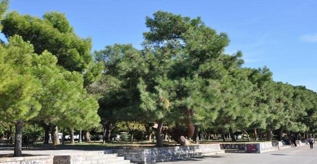 Αιματηρή συμπλοκή στο πάρκο του Αγίου Κωνσταντίνου