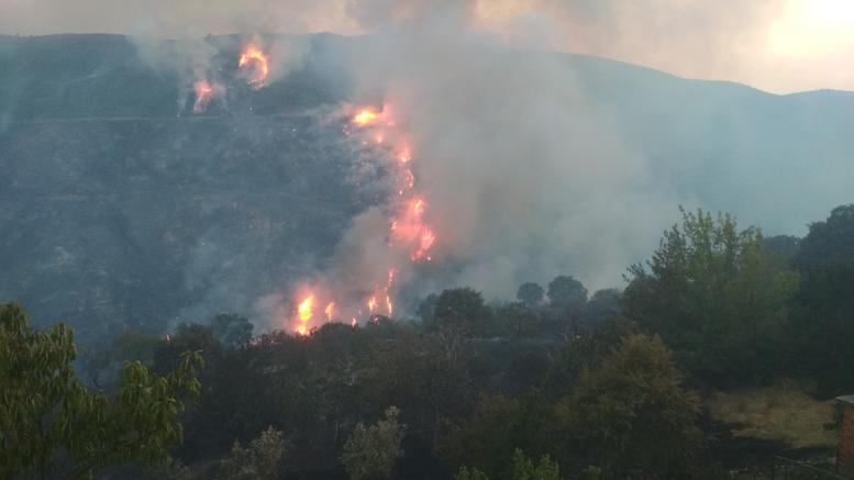 Συνελήφθη 64χρονος για τη φωτιά στην Εύβοια
