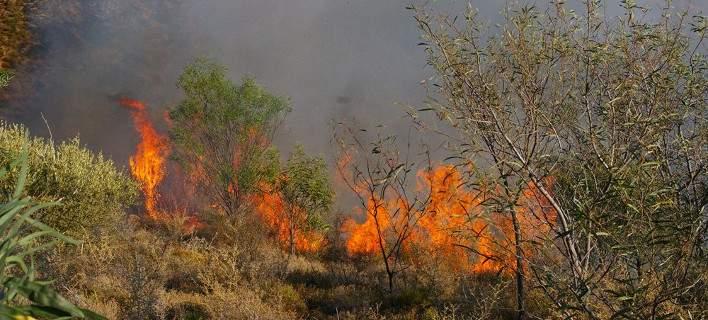 Εκτακτη συνεδρίαση του Σ.Ο.Π.Π. Μαγνησίας ενόψει κινδύνου για δασικές πυρκαγιές