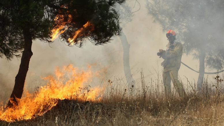 Σε εξέλιξη πυρκαγιές σε Τρίκαλα, Εύβοια, Μάνη, Φυλή και Αγ. Θεοδώρους