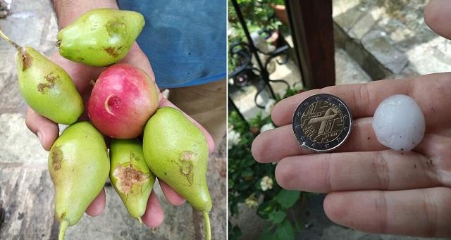 Το χαλάζι ρήμαξε τις καλλιέργειες στο Πήλιο