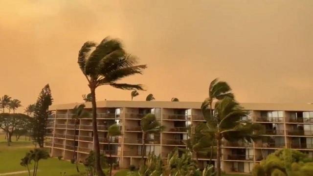 Καίγεται το νησί Μάουι στη Χαβάη: Απομακρύνθηκαν κάτοικοι και τουρίστες