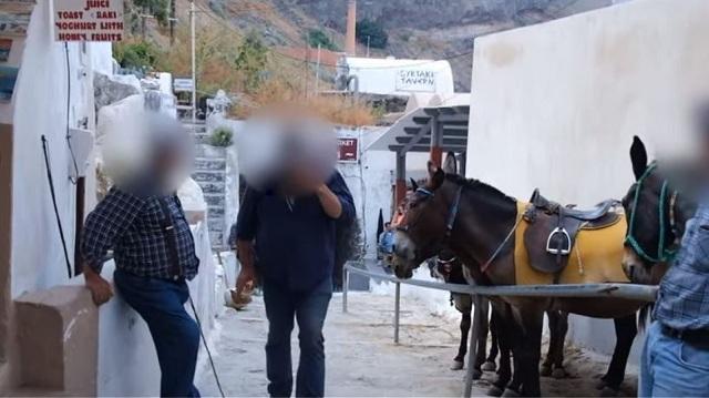 Φιλόζωοι καταγγέλλουν ξυλοδαρμό επειδή κατέγραφαν τα βασανιστήρια γαϊδουριών