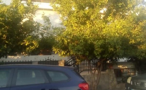 Στον Εισαγγελέα ο 41χρονος για το φονικό στη Ν. Αγχίαλo -Τι λένε οι γείτονες