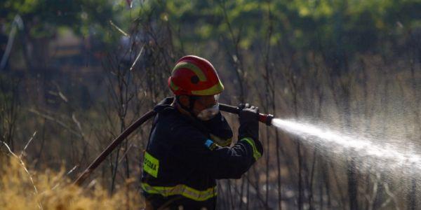 Μεγάλη φωτιά ξέσπασε στην Αργολίδα