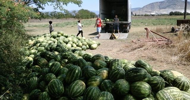 10 τόνοι καρπουζιών προσφέρθηκαν στο Κοινωνικό Παντοπωλείο Βόλου