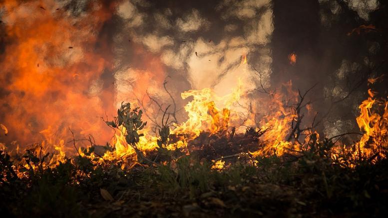 Είκοσι τέσσερις δασικές πυρκαγιές σε 13 ώρες σε όλη τη χώρα