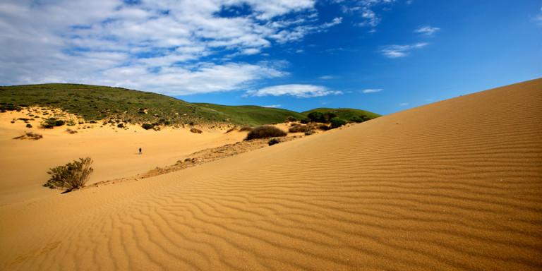 Η «Σαχάρα της Ελλάδας» βρίσκεται στη Λήμνο: Απόκοσμο σκηνικό με χρυσή άμμο [εικόνες]