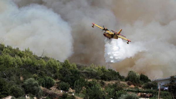 Δεκαοκτώ δασικές πυρκαγιές εκδηλώθηκαν σήμερα σε όλη την Ελλάδα