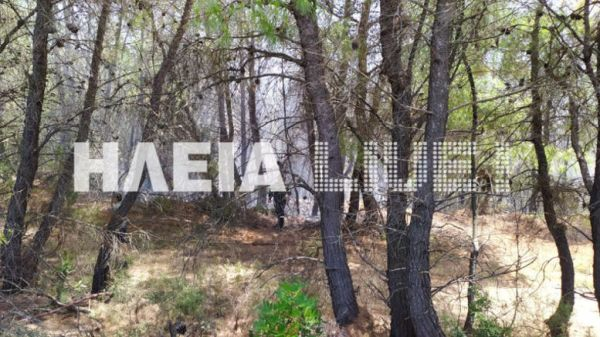 Φωτιά Αρχαία Ολυμπία: Εντολή εκκένωσης για τον Ξηρόκαμπο