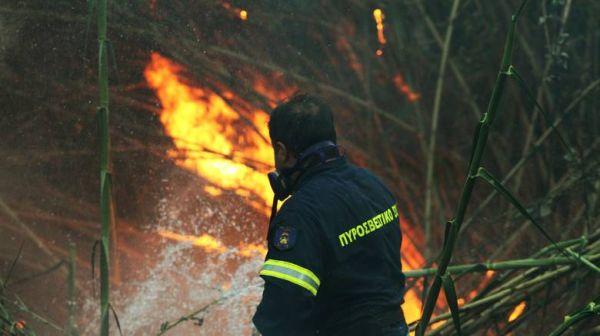 Νέο κρούσμα πυρκαγιάς στα Πευκάκια, μεταξύ του Ανακτόρου και κατοικιών