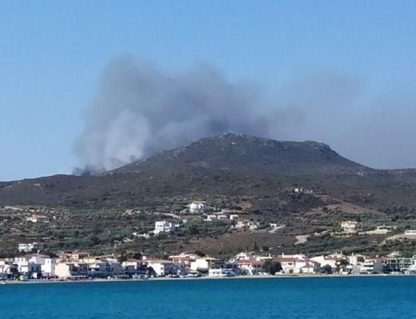 Φωτιά στην Ελαφόνησο - Εκκένωση κάμπινγκ & ξενοδοχείου