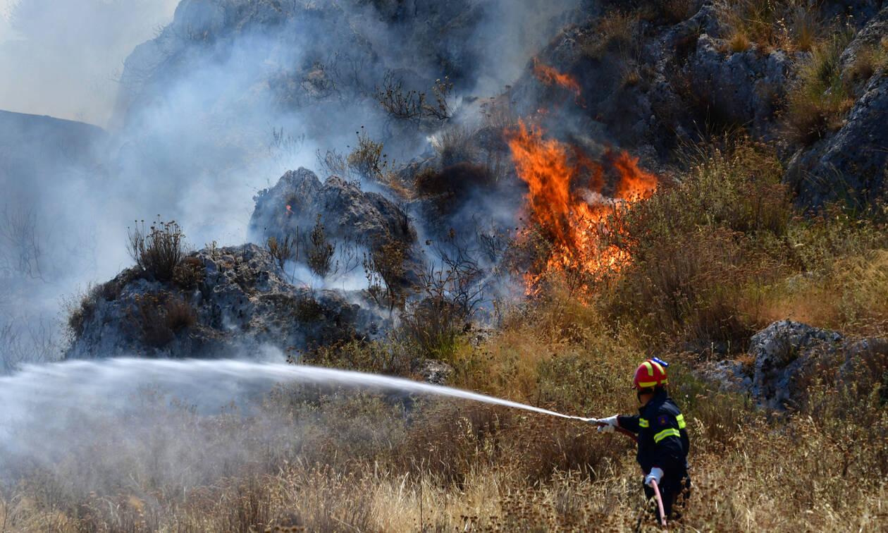 Φωτιά σε καλαμιές  στους Κωφούς Αλμυρού