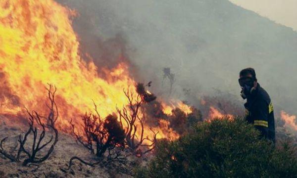 Μεγάλη πυρκαγιά στους Κωφούς Αλμυρού