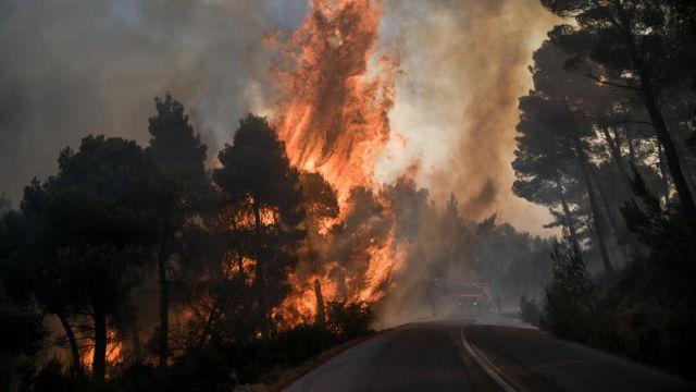 Τα 11,5 χιλιόμετρα έφτασε η πύρινη λαίλαπα στην Εύβοια