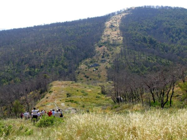 Χωρίς αντιπυρικές ζώνες η Μαγνησία