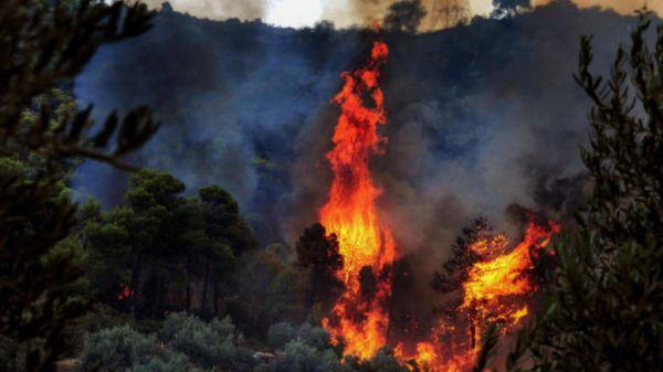 Πυρκαγιά σε εξέλιξη στα Καλάβρυτα