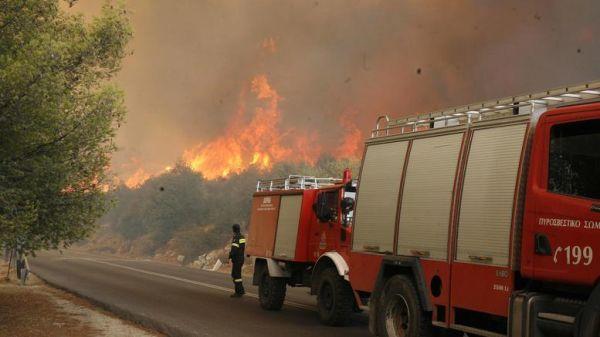 Συναγερμός στην Κέρκυρα - Πυρκαγιά σε περιοχή Natura