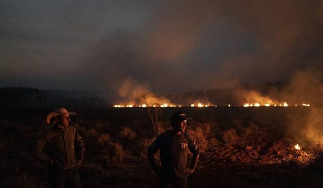 Παγκόσμια οργή για τις φωτιές στον Αμαζόνιο