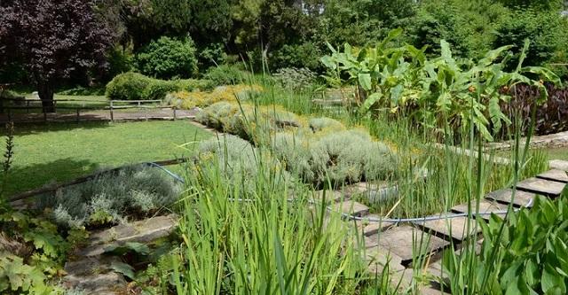Ετοιμο το τοπογραφικό για τον βοτανικό κήπο στους Κοκκωτούς