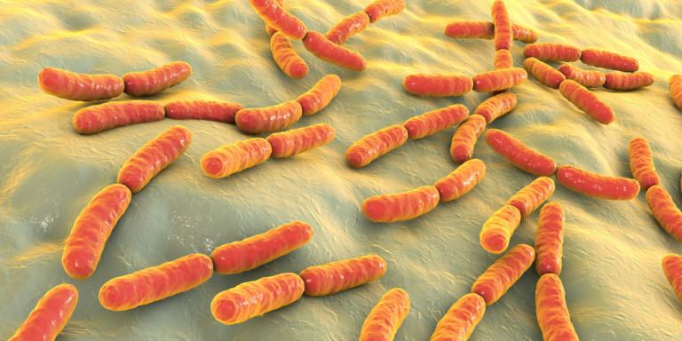 Ιταλία: Ανησυχία προκαλούν τα κρούσματα μόλυνσης στο «σούπερ βακτήριο» NDM-1