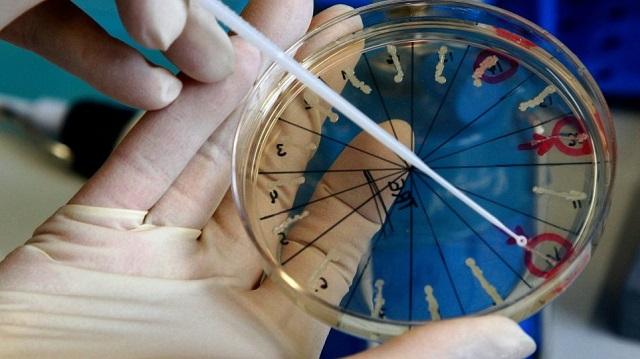 Ρωσία: Ανησυχία από έκρηξη στο εργαστήριο όπου φυλάνε τον ιό της ευλογιάς