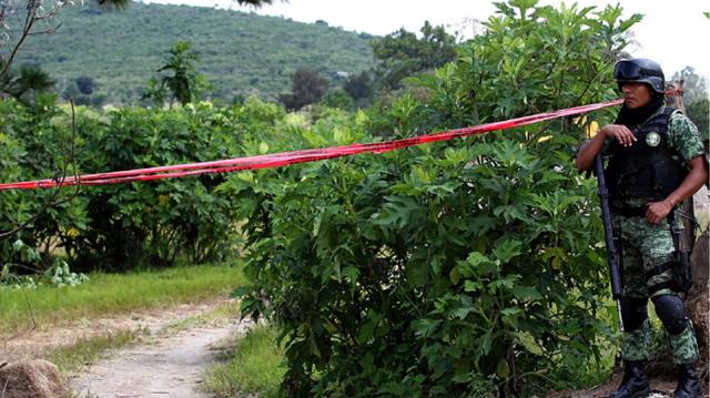 29 πτώματα σε 100 πλαστικές σακούλες εντόπισαν οι αρχές του Μεξικό
