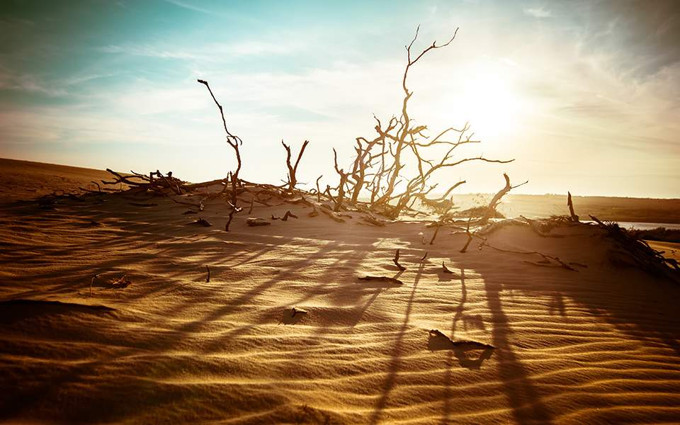 ΟΗΕ: Τα πέντε τελευταία χρόνια είναι τα θερμότερα που καταγράφηκαν ποτέ
