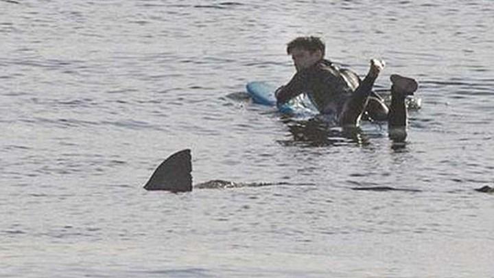 Τρόμος για σέρφερ που ήρθε αντιμέτωπος με λευκό καρχαρία