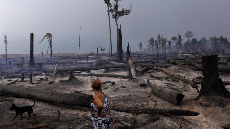 Βραζιλία: 63 συλλήψεις για τις μεγάλες πυρκαγιές στον Αμαζόνιο