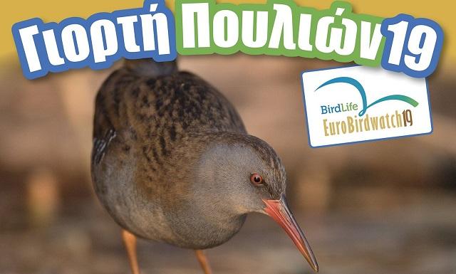 Γιορτή των Πουλιών στην Λίμνη Κάρλα